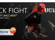 Đá gà ăn tiền ucw88