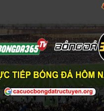 Bongda365