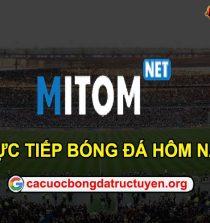 Mitom TV